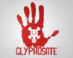 glyphosat cancer risk ile ilgili görsel sonucu