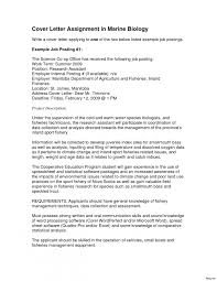 Resume : Find Resume Examples Amazing Design Picture Objective ...
