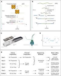 Sequencing Nothing Exploring Failure Modes Of Nanopore