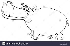 Hippopotamus Character Coloring Page Stock Photo 147289447 Alamy
