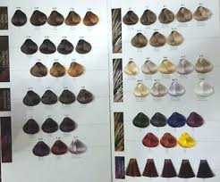 Maxima Hair Color Chart Brand New Made In Italy 14 99