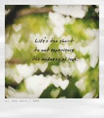 Life's Too Short Quotes Simple Life Is Too Short To Not Experience The Madness Of Love Quotes