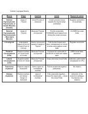 Muscle Action Chart Intrinsic Laryngeal Muscle Chart Pdf Intrinsic Laryngeal