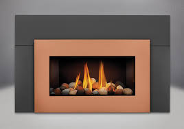gdi30nsb napoleon gdi30nsb roxbury direct vent gas fireplace insert with glass door painted black direct vent gas fireplaces