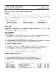 Hybrid Resume Examples Hybrid Resume Examples The Proper Best