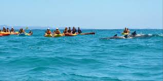 the best thing to do on a rainy day in Byron - Go Sea Kayak at Byron Bay,  Byron Bay Traveller Reviews - Tripadvisor