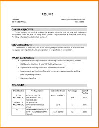 Career Objective Resume Job Objectives For Resume Simply Sarah Me