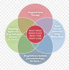 British Isles Venn Diagram Drug Venn Diagram Barca Fontanacountryinn Com Circle Hd