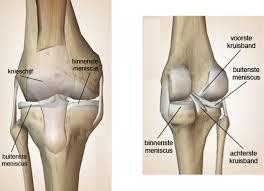 Pijnlijke bult in knieholte