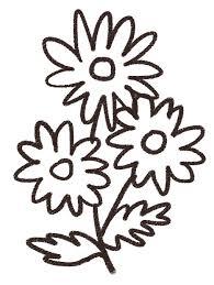 マーガレットのイラスト花 ゆるかわいい無料イラスト素材集