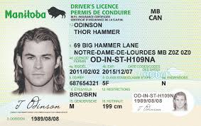 License Best Driver's Manitoba Id Scannable mb Ids Idviking Fake -