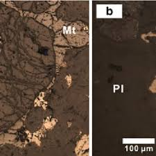 Sulfide Minerals Photomicrographs Of Sulfide Minerals Of The Baima Intrusion