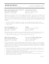 Testmasters Essay Format Federal Resume In Chinese Symbols Resume