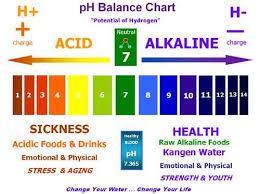 Kangen Water Ph Balance Chart Www Aguabygrace Com Ph