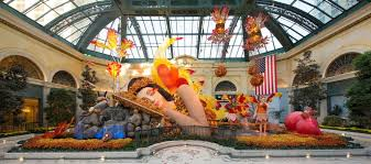 bellagio s conservatory botanical gardens fall display south garden 2018