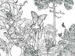 Forest Coloring Sheets Best Coloring Pages 2018