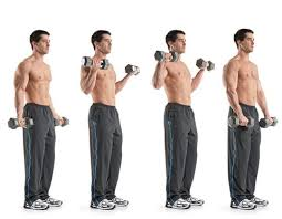 Biceps Exercise Chart 20 Best Biceps Exercises For Mens Arm Workouts