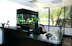 office desk fish tank. Office Desk Fish Tank View In Gallery Black Aquarium For The Sale