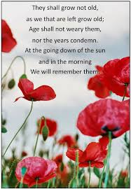 best anzacs images iers anzac day and being  every bed of roses anzac day an ode to the fallen and a list