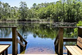 To help search for the missing divers, patrick peacock and chris rittenmeyer. Two More Divers Die In Eagle S Nest Dive Area Hernando Sun