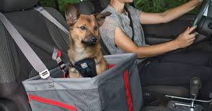 10 best car seats for dogs 2020 the