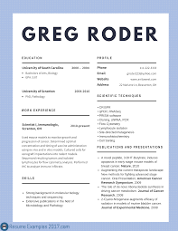 Example Resume 2017 Best CV Examples 24 to Try Resume Examples 24 1