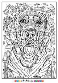 Small Picture Free printable Bernese Mountain Dog coloring page available for