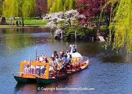 swan boat in the public garden s lagoon