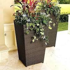 large outdoor plant pots nz outdoor