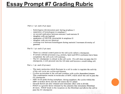 how to grade essays use a highlighter to mark all the statements  36 essay prompt 7 grading rubric