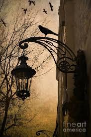 gothic lantern lighting. Gothic Raven Images | Fantasy Lantern With Ravens Photograph - Surreal . Lighting