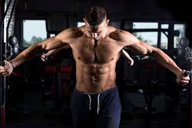 home workout program no gym required