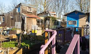Small Picture In a Tiny House Village Portlands Homeless Find Dignity by
