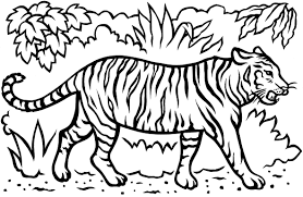 Small Picture Download Coloring Pages Tiger Coloring Pages Tiger Coloring