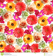 flowers pictures to print.  Pictures Download Seamless Flower Print Stock Image Image Of Element Pink   40874007 To Flowers Pictures E