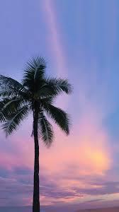 オシャレなiphone壁紙紫ピンクの夕焼け空とヤシの木のシルエットの