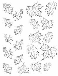 Small Picture And More Pattern Of Autumn Leaf Oak Tree Coloring Page Free
