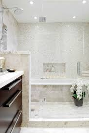 Walk in shower and Tub Combo