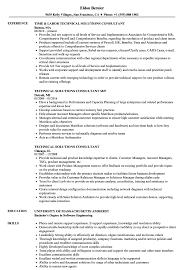 Technical Solutions Consultant Resume Samples Velvet Jobs