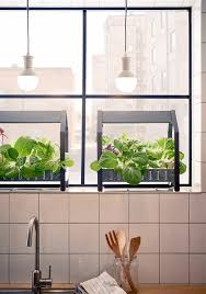 Hydroponic Kitchen Garden Ikea Is Selling The Coolest Hydroponic Gardening Kits Martha Stewart