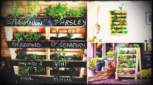 indoor wall herb garden stunning planters about indoor wall herb garden stunning planters about of now here is an idea for the wall you face