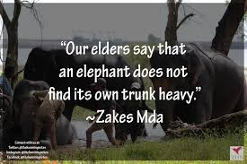 Save The Elephant Day Top Quotes For The Large Mammal The Humming