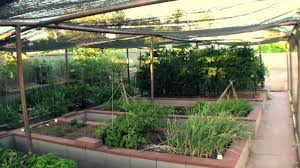 backyard vegetable garden with beds and covers vegetable plants in the shade garden