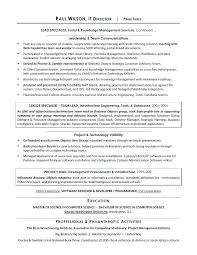 Professional It Resume Writers Professional Resume Writers Houston Fast Lunchrock Co Sample Resume