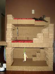 kitty condo the pictures there are toys that we have to itself as well some areas