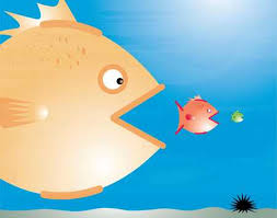 Image result for big fish eat little fish
