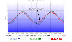 Effects Of Tsunami Apparent Otago Daily Times Online News