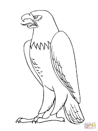 bald eagle template bald eagle coloring pages free coloring pages