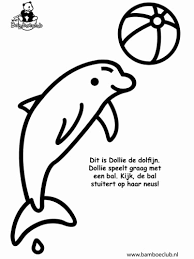 Dolfijn Kleurplaat Elegant Kleurplaat Pipapanda Archidev