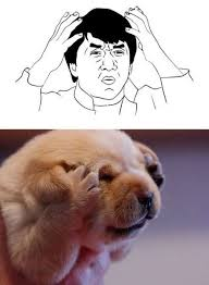Dogs Similar To Rage Face Memes - humorsharing.com via Relatably.com